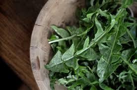 pissenlit salad