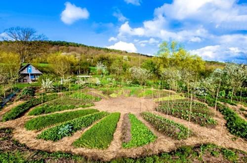 Un mandala au jardin l 39 herberie du beaumont - Comment demarrer un jardin en permaculture ...
