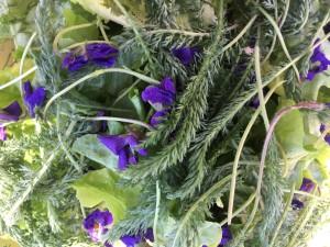 Salade violettes