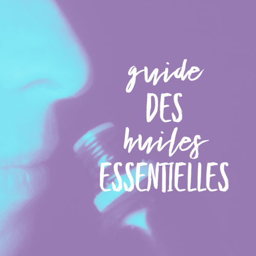 Guide des HE